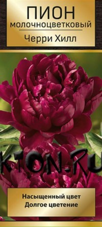 Пион Черри Хилл (Paeonia Cherry Hill)